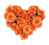 Orange rose flowers in a heart shape arrangement royalty free stock photos
