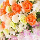 Orange rose and orchid Royalty Free Stock Photos