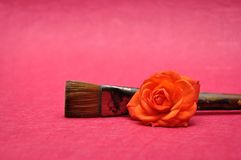 An orange rose with a paintbrush. Isolated on a pink background royalty free stock photos