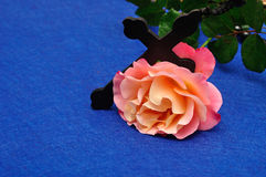 Orange rose with rosary beads. An orange rose with rosary beads royalty free stock images