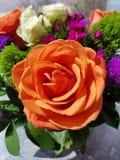 Orange rose. Wonderful flower arrangement with orange Rose& x27;s royalty free stock image