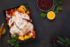 Orange rosemary chicken with cranberries stock photos