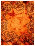 Orange roses card Stock Image