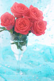 Orange roses in clear glass, tinted Royalty Free Stock Photo