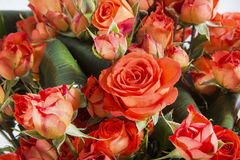Orange roses close-up bouquet Royalty Free Stock Photography