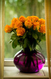 Orange roses in a glass purple vase. Flowers, purple flowers in vase of roses in a vase on the windowsill, bright saturated colors, bright colors, yellow roses royalty free stock photography