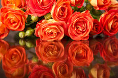 Orange roses on glass table with copy space Royalty Free Stock Photography