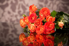Orange roses on glass table with copy space Stock Images