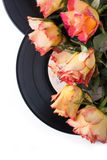 Orange roses with old records over white Royalty Free Stock Image