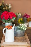 Orange roses in silver watering can Stock Images