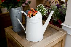 Orange roses in silver watering can on wooden table Royalty Free Stock Photo