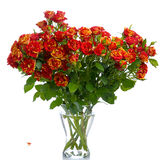 Orange roses in vase Royalty Free Stock Image