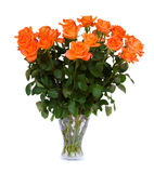 Orange  roses in vase Royalty Free Stock Photos