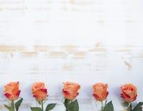 Orange roses on white rustic wooden background Stock Image