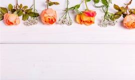 Orange rosor på vit träbakgrund kopiera avstånd Fostra ` s, valentin, kvinna` s, begrepp för bröllopdag Fotografering för Bildbyråer