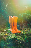 Orange rubber boots in the forest. Orange rubber boots in a Sunny forest lying on the green grass Stock Photo