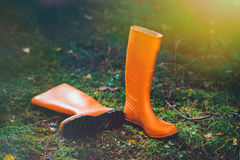 Orange rubber boots in the forest. Orange rubber boots in a Sunny forest lying on the green grass Royalty Free Stock Photography