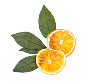 Orange sèche Photos libres de droits