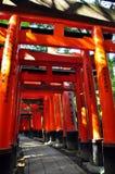orange s-torii Arkivfoto