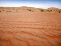 Orange sand av den Wahiba öknen, Oman royaltyfri fotografi