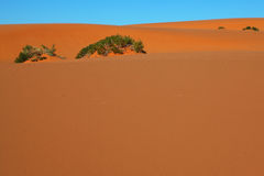 Orange sand and blue sky Stock Photo