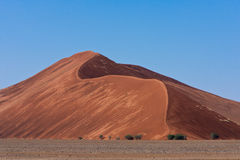Orange Sand Dunes. With blue sky in namibia desert Royalty Free Stock Images