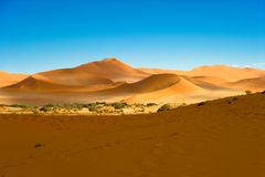 Namib-Naukluft Park, Namib Desert, orange dunes blue sky, Sossusvlei, Namibia royalty free stock photography