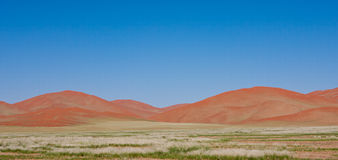Orange Sand Dunes at Sossusvlei Namibia. With green grass and blue sky royalty free stock photo