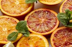 Orange sanguine colorée et juteuse image libre de droits