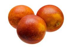 Orange sanguine rouge sicilienne d'isolement sur le fond blanc mandarine Chemin de coupure Photos stock