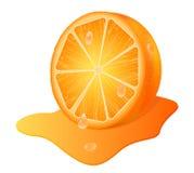 orange sappy Arkivbild