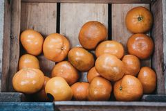 Orange satsumas inside a wooden box stock images