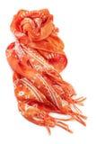 Orange scarf Stock Image