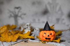 Orange scary pumpkin with witch hat. Closeup. Orange scary pumpkin with witch hat. Halloween background. Closeup royalty free stock image