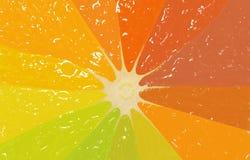 Orange Scheibe in den verschiedenen Farben, Hintergrund Lizenzfreie Stockfotografie