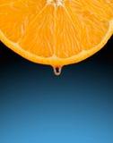 Orange Scheibe mit einem Tropfen des Safts Lizenzfreies Stockfoto