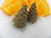 Orange Schneejahr mit Tannenzweigen Stockfoto