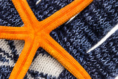 Orange sea star Royalty Free Stock Images
