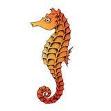 Orange Seahorse Line Art Illustration Stock Photography