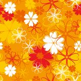 Orange seamless flower pattern Stock Image