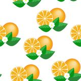 Orange seamless pattern Stock Photos