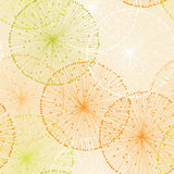 Orange Seamless Pattern with Dandelions Stock Photography