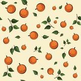 Orange seamless pattern Stock Images