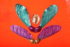 Orange seed abstract Stock Photos