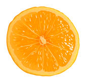 Orange Segment Royalty Free Stock Image