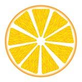 Orange segment Stock Images