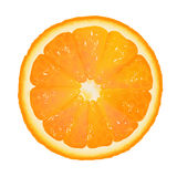 Orange Segment Royalty Free Stock Photos