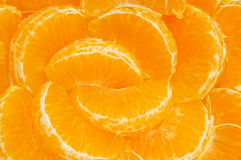 orange segment Royaltyfri Fotografi