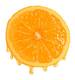 Orange Segment with grops Royalty Free Stock Photo