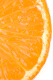Orange segment on a white background Royalty Free Stock Images